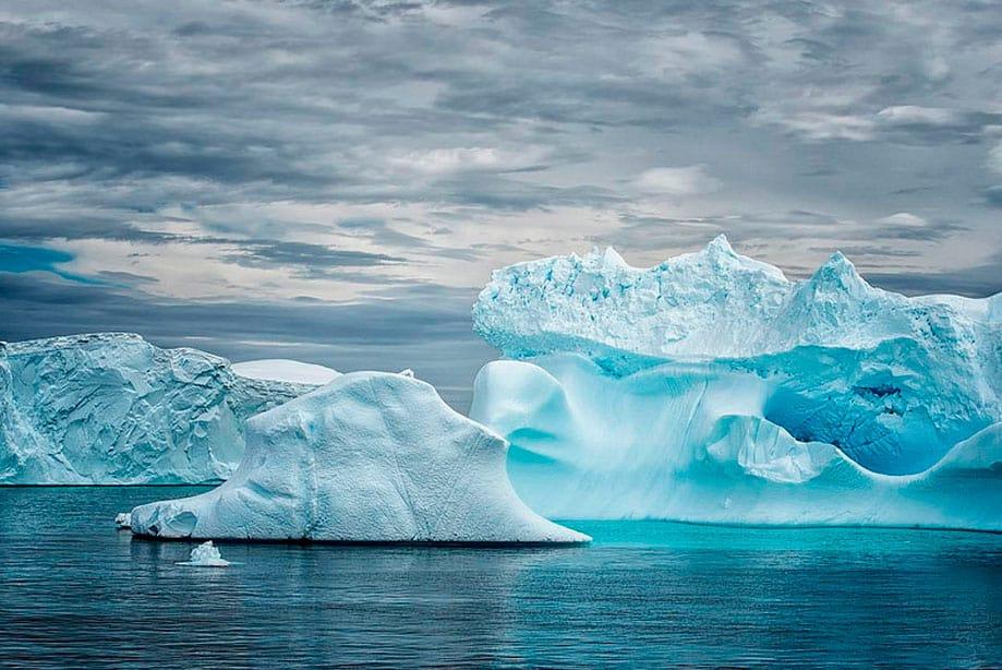 qué hacer en la Antártida