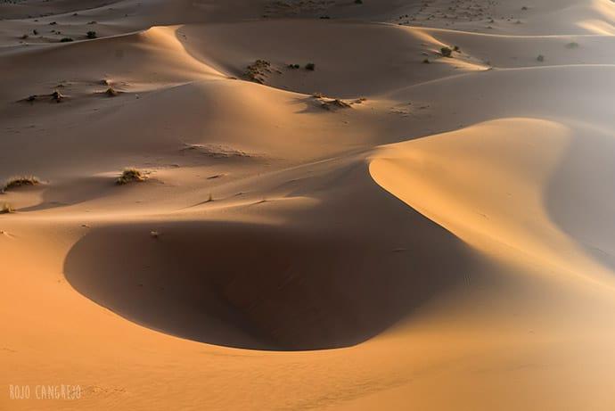 Desierto | Rojo Cangrejo
