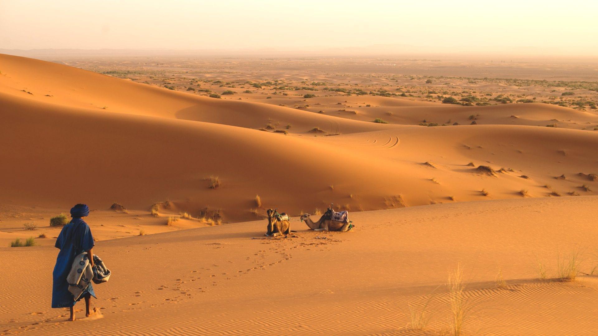 El mejor campamento del desierto de Marruecos | Rojo Cangrejo Blog de Viajes