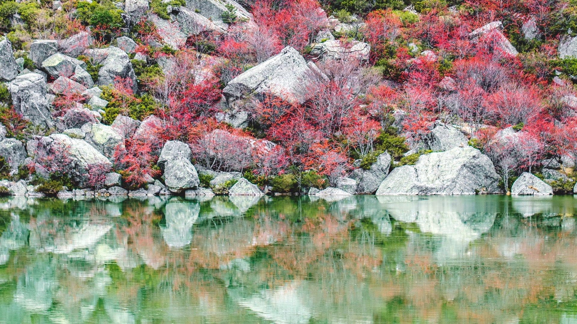 Laguna Negra en Soria | Rojo Cangrejo Blog de Viajes
