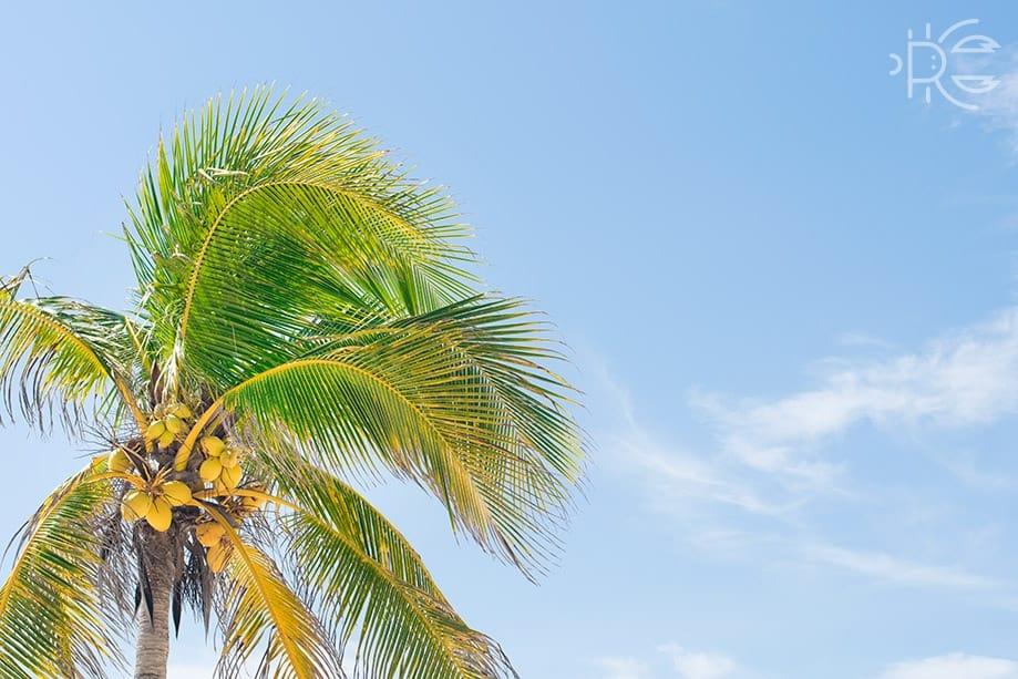 Riviera Maya lugares para visitar