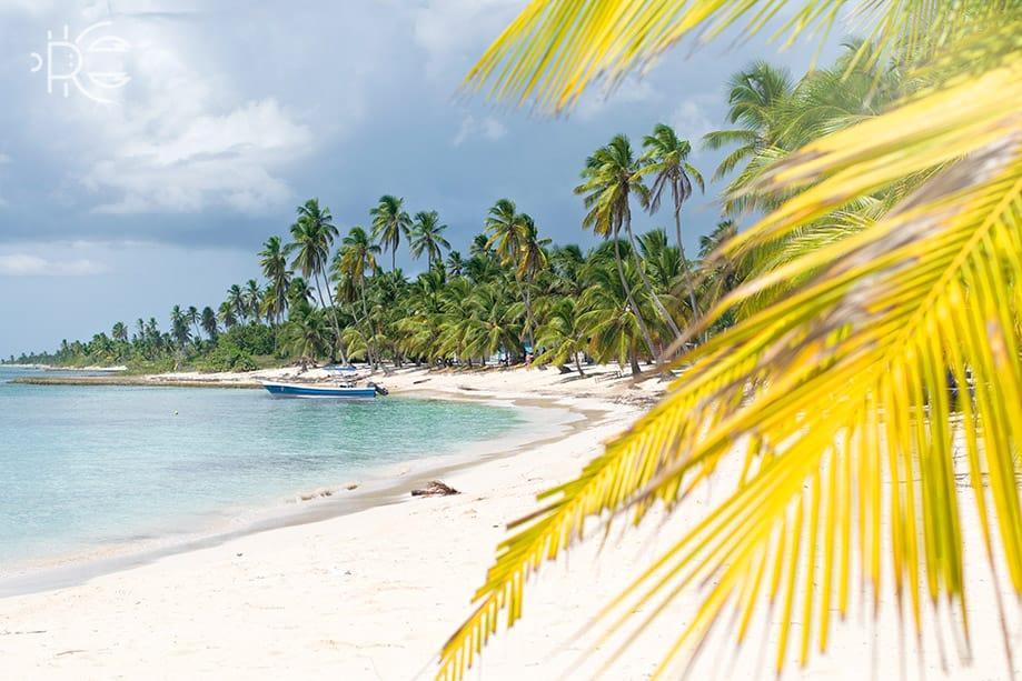 Excursión a Isla Saona