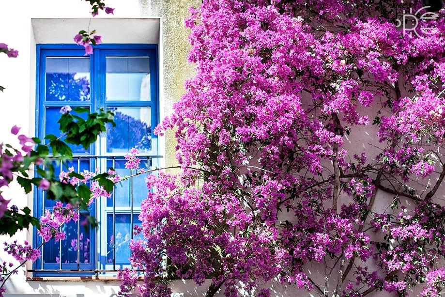 ¿Qué ver en Cadaqués y en los pueblos cercanos?