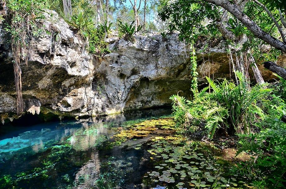 Gran cenote Riviera Maya