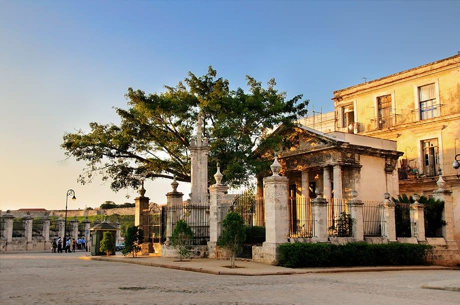 Ceiba de la plaza de Armas