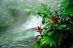 Tabacón aguas termales Costa Rica