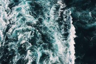 que_crucero_elegir
