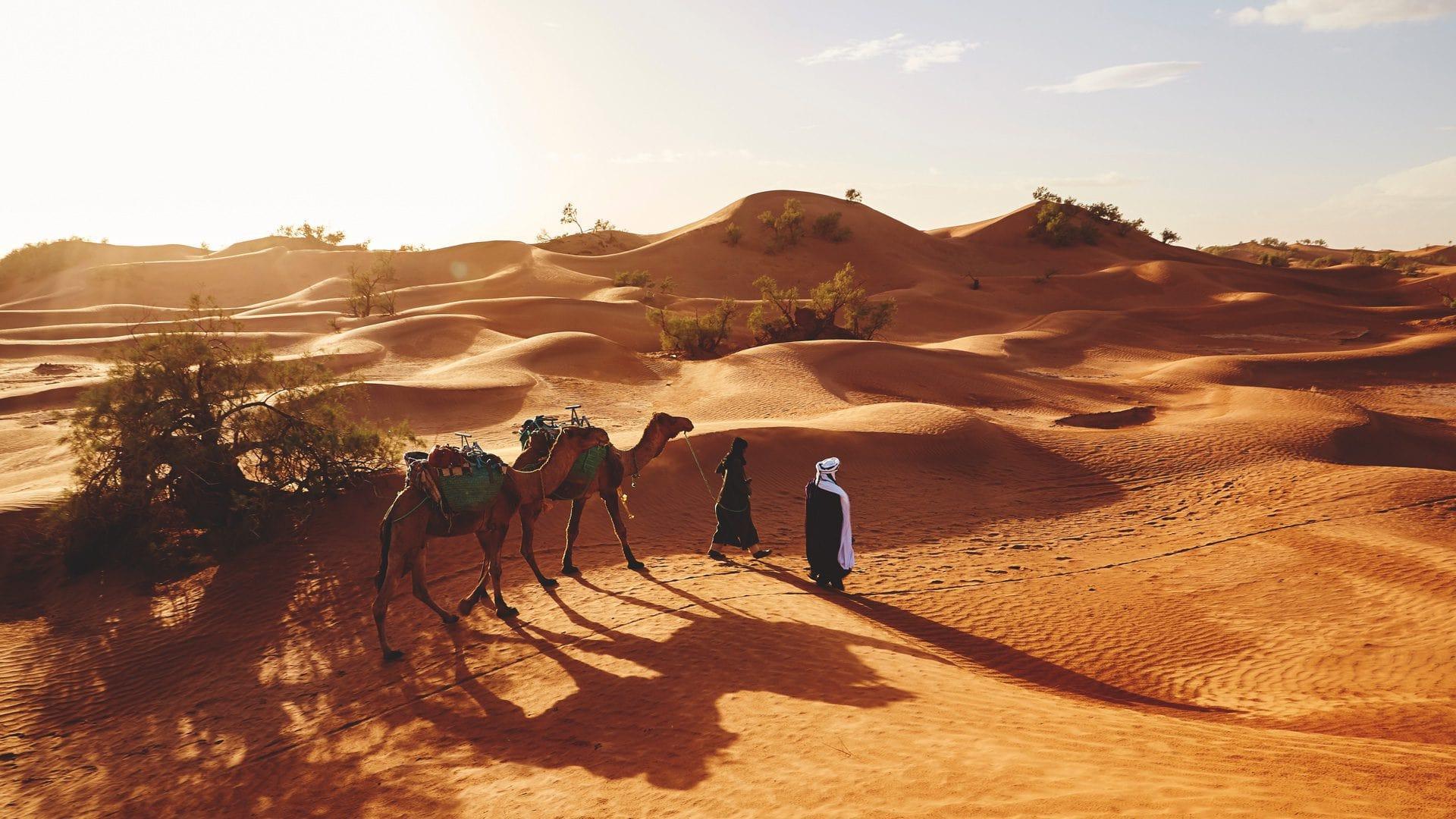 Desierto Neguev Israel | Rojo Cangrejo Blog de Viajes