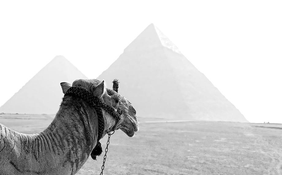 guía completa de Egipto | Rojo Cangrejo Blog de Viajes