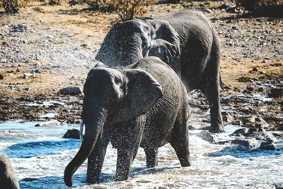 namibia cómo llegar | Rojo Cangrejo Blog de Viajes