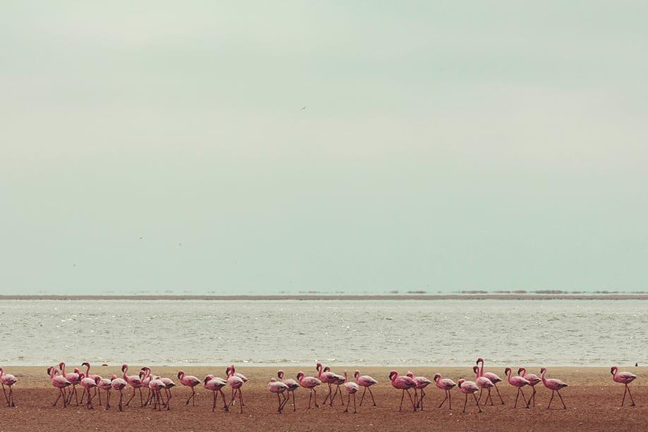 namibia cuando ir | Rojo Cangrejo Blog de Viajes