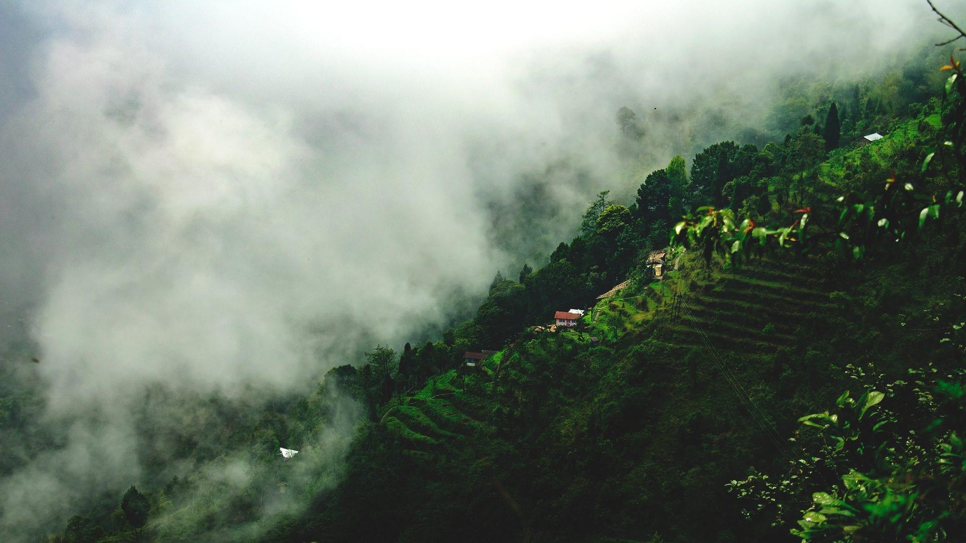 Qué ver en Darjeeling | Rojo Cangrejo Blog de Viajes