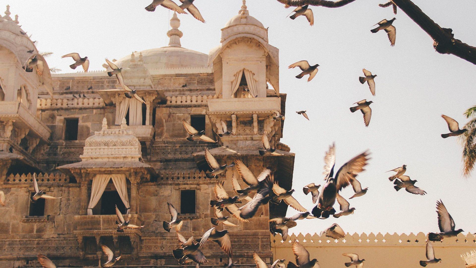 Qué ver en Jaisalmer | Rojo Cangrejo Blog de Viajes