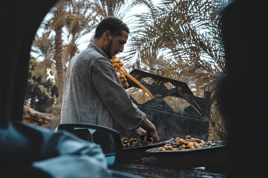 Egipto para viajar ahora